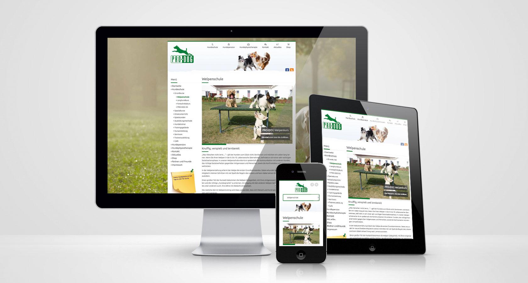 PRO-DOG Webseite Welpenschule